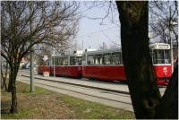 Die Straßenbahn in Wien